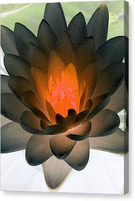 Canvas Print featuring the photograph The Water Lilies Collection - Photopower 1036 by Pamela Critchlow
