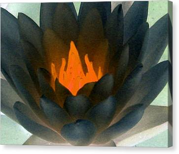 Canvas Print featuring the photograph The Water Lilies Collection - Photopower 1038 by Pamela Critchlow