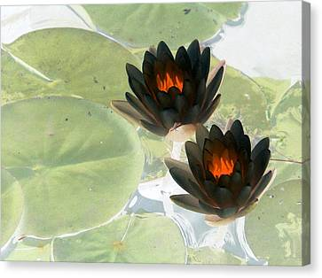 Canvas Print featuring the photograph The Water Lilies Collection - Photopower 1039 by Pamela Critchlow