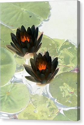 Canvas Print featuring the photograph The Water Lilies Collection - Photopower 1040 by Pamela Critchlow