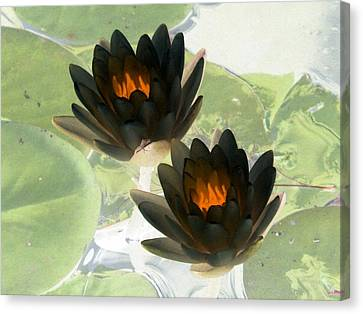 Canvas Print featuring the photograph The Water Lilies Collection - Photopower 1041 by Pamela Critchlow