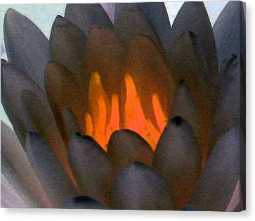 Canvas Print featuring the photograph The Water Lilies Collection - Photopower 1044 by Pamela Critchlow