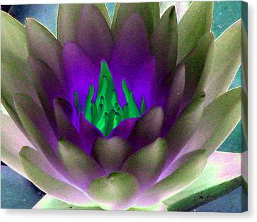 Canvas Print featuring the photograph The Water Lilies Collection - Photopower 1117 by Pamela Critchlow