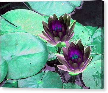 Canvas Print featuring the photograph The Water Lilies Collection - Photopower 1118 by Pamela Critchlow