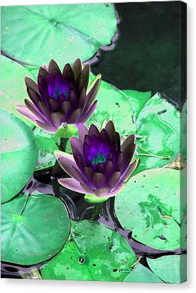 Canvas Print featuring the photograph The Water Lilies Collection - Photopower 1119 by Pamela Critchlow