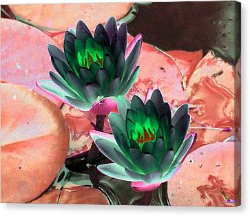 Canvas Print featuring the photograph The Water Lilies Collection - Photopower 1120 by Pamela Critchlow