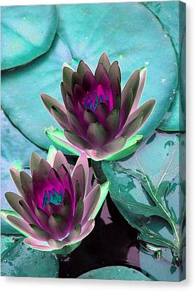 Canvas Print featuring the photograph The Water Lilies Collection - Photopower 1124 by Pamela Critchlow