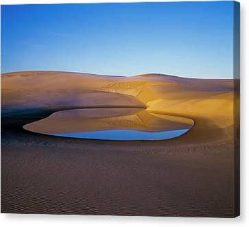 The Water Table Raises Above The Sand Canvas Print by Robert L. Potts