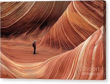 The Wave Seeking Enlightenment Canvas Print by Bob Christopher