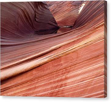 'the Wave' North Coyote Buttes 62 Canvas Print