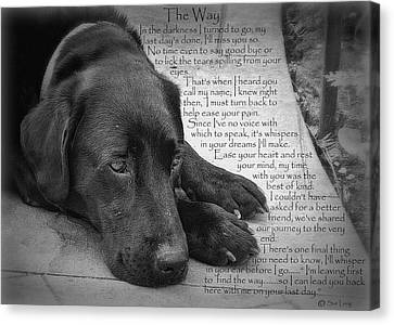 The Way Black Lab Canvas Print