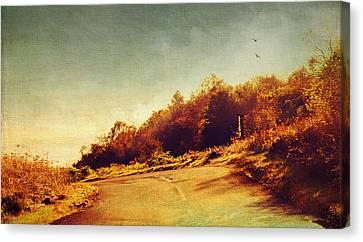 The Way Down. Trossachs National Park. Scotland Canvas Print by Jenny Rainbow