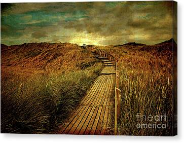 The Way Canvas Print by Hannes Cmarits