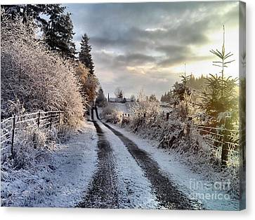 Canvas Print featuring the photograph The Way Home by Rory Sagner