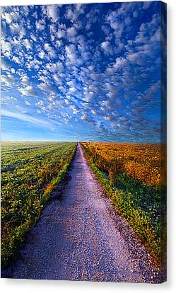 The Way Is Clear Canvas Print by Phil Koch