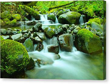 The Way Of Healing Water  Canvas Print