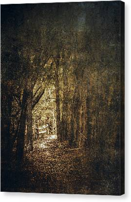 Muted Canvas Print - The Way Out by Scott Norris