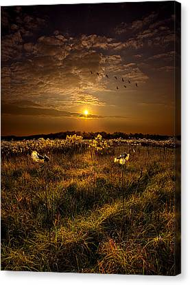 The Way South Canvas Print by Phil Koch