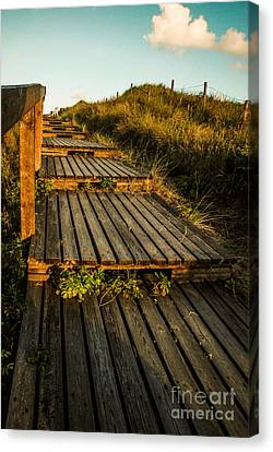 The Way To The Sea Canvas Print by Hannes Cmarits