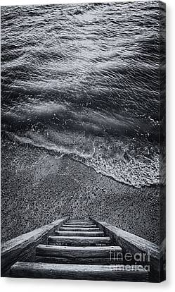 The Way To Unknown Canvas Print by Svetlana Sewell