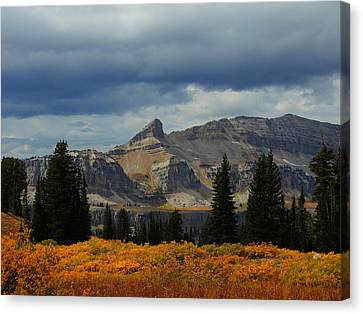 Canvas Print featuring the photograph The Wedge by Raymond Salani III