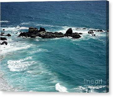 Canvas Print featuring the photograph The Whale Rock by Carla Carson