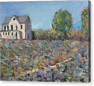 The White House Canvas Print by David Zimmerman
