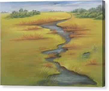 The Wicken Fen Canvas Print