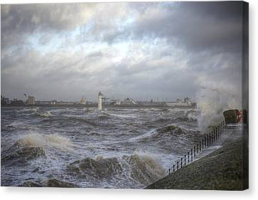 The Wild Mersey Canvas Print