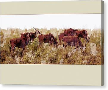 The Wilds Canvas Print by Ron Jones