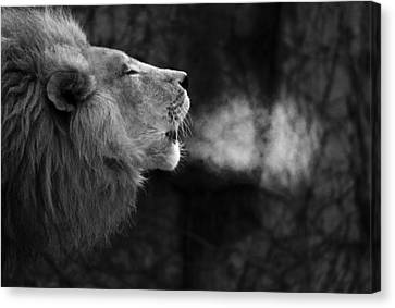The Will Of The King Canvas Print by Larry Bohlin