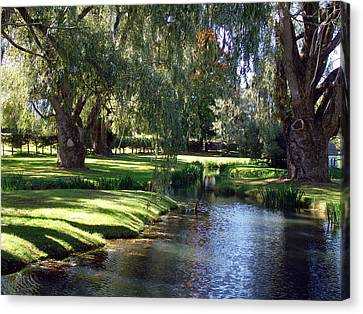 The Willows Of Grand Pre Canvas Print by George Cousins