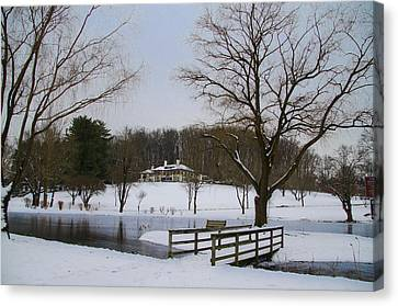 Radnor Canvas Print - The Willows  Skunk Hollow Park by Bill Cannon