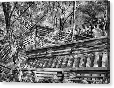 The Winding Stairs Canvas Print by Howard Salmon