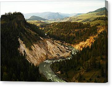 The Winding Yellowstone Canvas Print by Jeff Swan