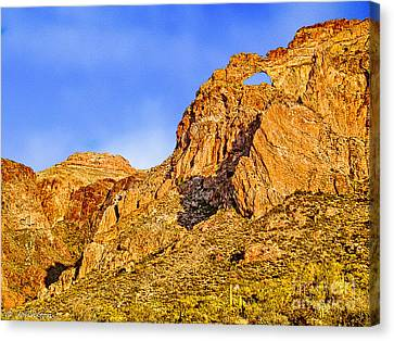 The Window Organ Pipe Cactus National Monument Sunset Canvas Print by Bob and Nadine Johnston