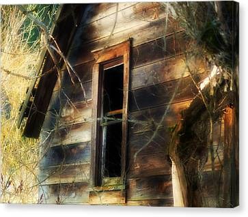 The Window2 Canvas Print