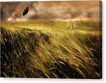 The Windy Day Canvas Print by Mal Bray