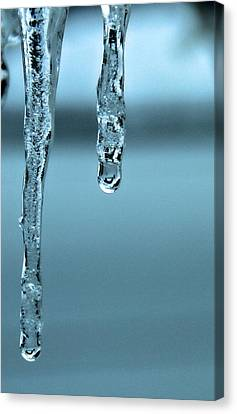 The Winter Melt Canvas Print by Dan Sproul