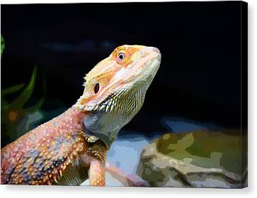 The Wise Lizard Canvas Print by Celestial Images