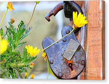The Wise Owl Padlock - Cambria California  Canvas Print by Tap On Photo