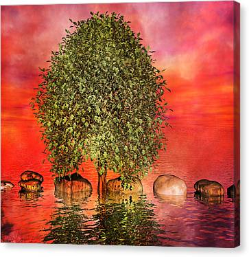 The Wishing Tree One Of Two Canvas Print by Betsy C Knapp