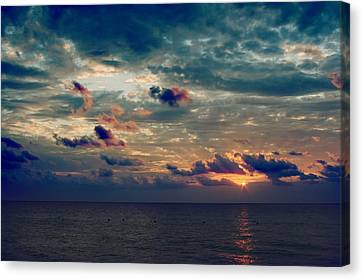 The Wonder Of It All Canvas Print by Laurie Search