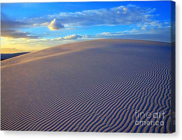 The Wonder Of New Mexico Canvas Print by Bob Christopher