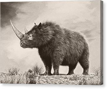 One Horned Rhino Canvas Print - The Woolly Rhinoceros Is An Extinct by Philip Brownlow