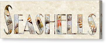 The Word Is Seashells Canvas Print by Andee Design