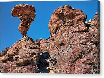 The World-famous Balanced Rock Canvas Print