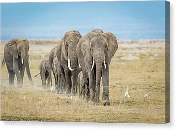 The World's Greatest Parade. Canvas Print