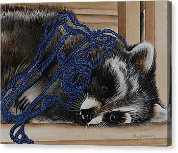 The Yarn Won Canvas Print by Joy Bradley
