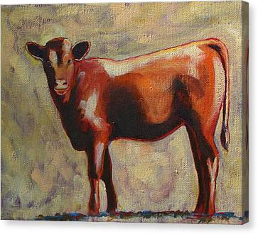 The Yearling Calf Canvas Print